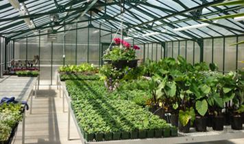 greenhouse-testing