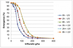 Figure 2. Effect on time until incorporation, trifluralin application rate (g/ha) and UV exposure on the mean emergence of annual ryegrass (of 25 seeds sown), in an alkaline sandy soil.