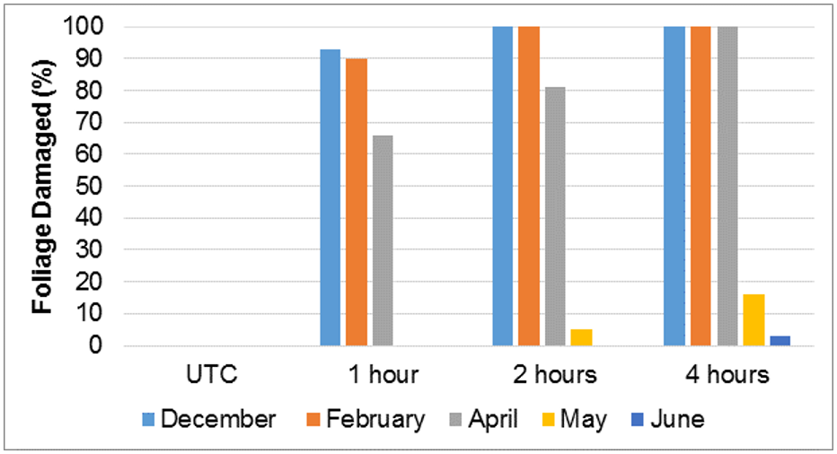 Figure 3. Comparison of the rate of onset of symptoms (in hours after spraying) from a 16 g glyphosate acid (gly) + 21 g nonanoic acid RTU at different times of the year. The UTC is an untreated control.